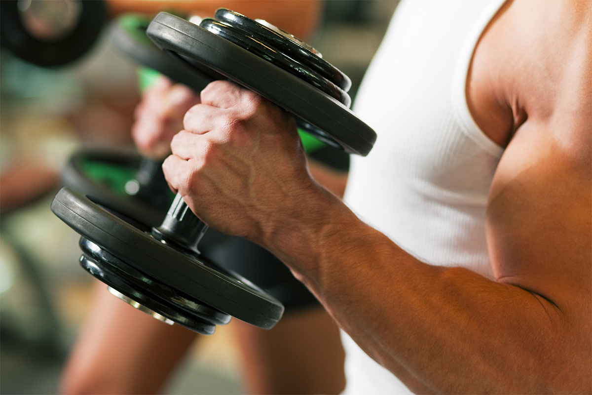 Muscles With Dumbbell